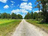 803 Hibiscus Drive - Photo 4