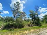 803 Hibiscus Drive - Photo 5