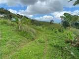 Carr.155 Km 35.2 Int Bo Perchas - Photo 2