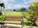 198 Bo. Ceiba Sur - Photo 2