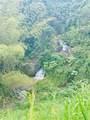 Kilometer 18.1, State Road Pr 152 Cedro Abajo Ward - Photo 16