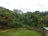 BO Malezas Carr 348 Km 5.3 Int Road - Photo 1