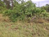 602 Bougainvillea - Photo 1