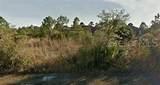 914 Camellia Drive - Photo 1