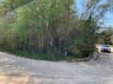 0 Junior Lake Drive - Photo 3