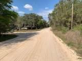 0 Junior Lake Drive - Photo 8