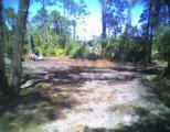 Windy Pine Way - Photo 1