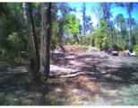 Windy Pine Way - Photo 2