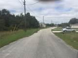 264 Begonia Lane - Photo 2