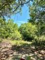 Pine Tree Drive - Photo 2