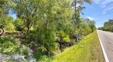 Pine Tree Drive - Photo 3