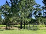 3370 Hickory Tree Road - Photo 8