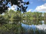3100 Hickory Tree Rd Road - Photo 10