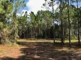 3100 Hickory Tree Rd Road - Photo 13