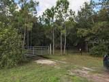 3100 Hickory Tree Rd Road - Photo 2