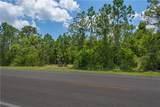3100 Hickory Tree Rd Road - Photo 41