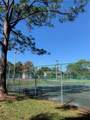 2610 Lemon Tree Lane - Photo 12