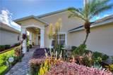 419 Royal Palm Dr - Photo 12