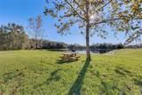 770 Siena Palm Drive - Photo 19