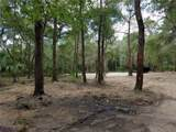 9703-A Carr Road (Off Boyette) Road - Photo 4