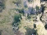 2230 Lost Pine Trail - Photo 15