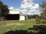 15550 Caruthers Road - Photo 11
