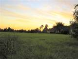 17305 Ballmont Park Drive - Photo 8