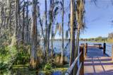 1711 Heron Cove Drive - Photo 37