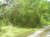 0 Mazie Drive - Photo 2
