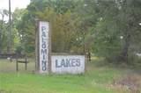 0 Palamino Lake Drive - Photo 23
