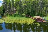 3165 Lake Ellen Drive - Photo 56
