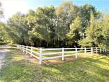 33245 Mandrake Road - Photo 10