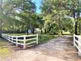 33245 Mandrake Road - Photo 5