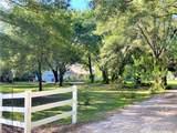 33245 Mandrake Road - Photo 6
