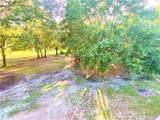 33245 Mandrake Road - Photo 75