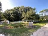 33245 Mandrake Road - Photo 8