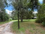 16846 Jetson Drive - Photo 7