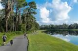 3951 Woods Rider Loop - Photo 4