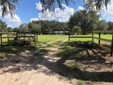 5702 Tindale Rd - Photo 3