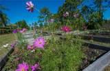 2543 Brassica Drive - Photo 16