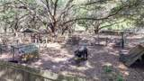 30900 State Road 54 - Photo 40
