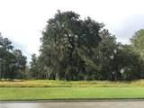 4523 Hickory Oak Drive - Photo 2