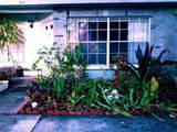 914 Burlwood Street - Photo 2