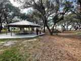 13118 Zolo Springs Circle - Photo 29