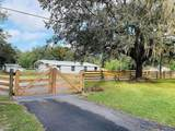 3810 Autumn Palm Drive - Photo 33