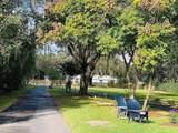 3810 Autumn Palm Drive - Photo 35