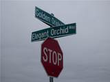 5860 Elegant Orchid - Photo 4