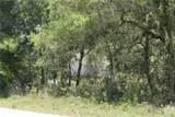 121 Evaro Drive - Photo 6