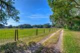 1601 Joe Mcintosh Road - Photo 21