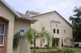 5031 Sunridge Palms Drive - Photo 4